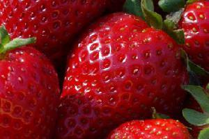 Ισχυρές αντηλιακές ιδιότητες έχουν οι φράουλες
