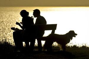 Πώς επηρεάζει το κατοικίδιο την ερωτική σχέση μας