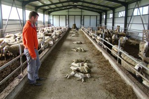 Έχουν χάσει τον ύπνο τους οι κτηνοτρόφοι της Θράκης