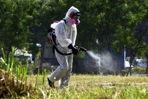 Παρεμβάσεις για την καταπολέμηση των κουνουπιών