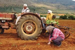Νέα γραμμή εξυπηρέτησης αγροτών