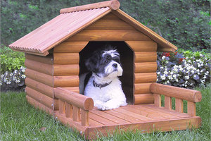 4f21b7d7493c Φτιάξτε μόνοι σας το σπίτι του σκύλου σας! – Newsbeast