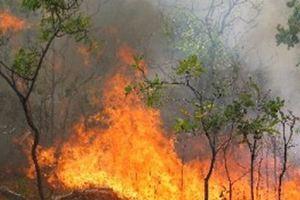 Δύο πυρκαγιές στο Κορωπί
