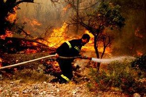 Πυρκαγιά στην Ελασσόνα