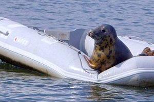 Άλλος με τη βάρκα της;