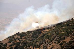 Στις φλόγες δασική έκταση στη Λακωνία