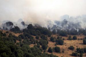 Υπό μερικό έλεγχο η φωτιά στο Πολυδένδρι