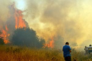 Πυρκαγιά στο Πετρωτό Δομοκού