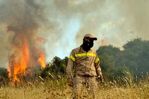 Καίγεται δάσος στη Λακωνία