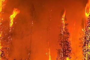 Μαίνεται η φωτιά στην Καστρίτσα Ιωαννίνων