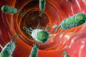 Ερευνητές εστιάζουν στην αντίσταση στα αντιβιοτικά