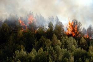 Πυρκαγιά στα Χανιά