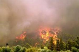 Απειλήθηκαν σπίτια από τη φωτιά στη Λακωνία