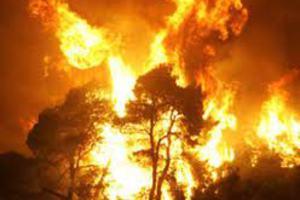 Σκοπιανοί έκαψαν την Ηλεία;