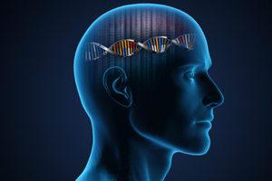 Το πόσο έξυπνοι είμαστε το οφείλουμε και στα γονίδια των γονιών μας