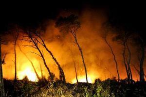Φωτιά απειλεί σπίτια στις Αφίδνες