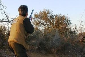 Οι κυνηγοί στα Γιάννενα έμειναν χωρίς άδειες