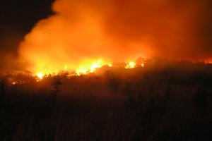 Μεγάλη φωτιά στον οικισμό του Μπάλα στην Αχαΐα