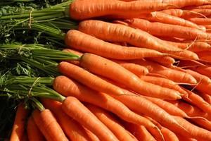 Μάσκα με καρότο για τα μαλλιά