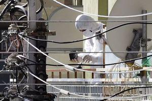 Προετοίμαζαν τρομοκρατικό χτύπημα κατά της COSCO στον Πειραιά