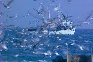 Επιστράτευσαν... καΐκι για να εντοπίσουν σκάφος