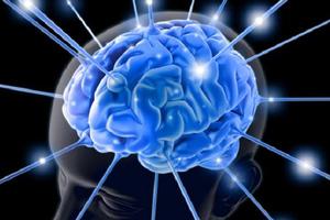Ποια επαγγέλματα προστατεύουν τη μνήμη