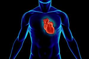 Δημιούργησαν καρδιά μέσω τρισδιάστατης εκτύπωσης