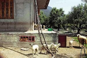 Μνήμες από το Κωσταλέξι ξύπνησαν στα Τρίκαλα