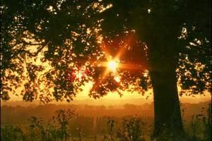 Ο όγδοος θερμότερος Σεπτέμβριος στον πλανήτη