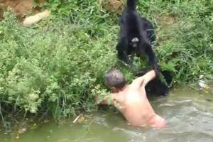 Μεθυσμένος άντρας δέχτηκε επίθεση από μαϊμούδες