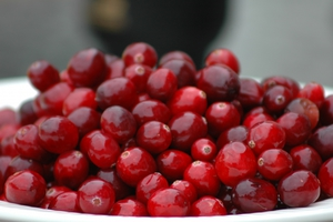 Ο χυμός από cranberry ασπίδα κατά των παιδικών λοιμώξεων