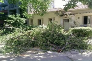 Άνεμοι οκτώ μποφόρ «σάρωσαν» τη Μαγνησία