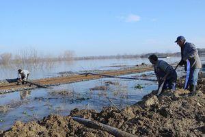 Συνεχίζεται η επιφυλακή λόγω ανόδου της στάθμης του ποταμού Έβρου