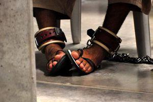 Εκατοντάδες ακτιβιστές κρατούμενοι σε απεργία πείνας