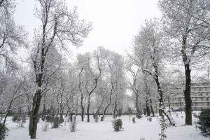 Χωρίς ρεύμα και τηλέφωνο χωριά της Καρδίτσας