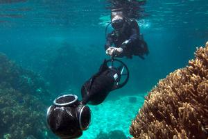 Εικονική βουτιά στον Μεγάλο Κοραλλιογενή Ύφαλο!
