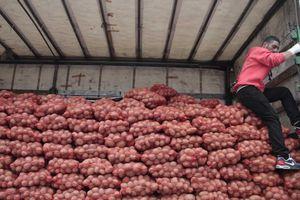 Μεγάλη επιτυχία για το «κίνημα της πατάτας» στη Λάρισα