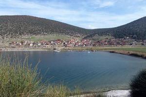 Ψάρεψαν γουλιανό-γίγα στη λίμνη Πολυφύτου