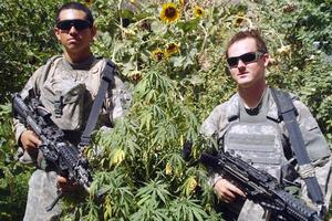 Αμερικανοί στρατιώτες ποζάρουν σε φυτεία χασίς