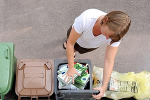 Στα σκουπίδια 6,7 εκ. τόνοι τροφίμων στη Γερμανία