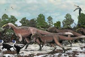 Απολιθώματα γιγάντιου δεινοσαύρου ανακαλύφθηκαν στην Κίνα