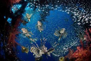 Οι ωκεανοί επιβράδυναν την κλιματική αλλαγή