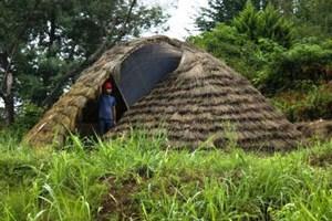 Βιοδιασπώμενο σπίτι από μπαμπού