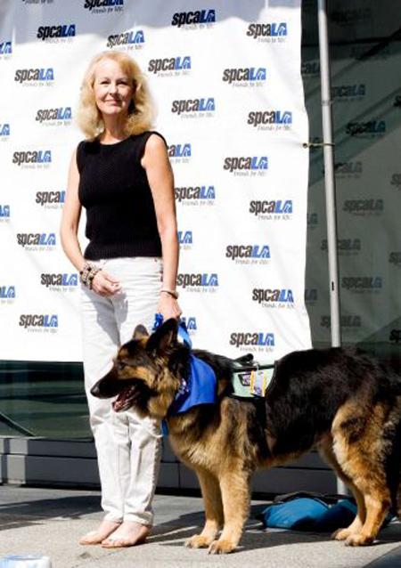 Σκύλος-  ήρωας στο Λος Άντζελες!