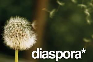 Ολοκληρώνεται η ανάπτυξη του κοινωνικού δικτύου Diaspora