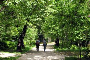 «Ανακαλύπτοντας τον Εθνικό Κήπο»