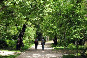Ο Εθνικός Κήπος σημείο συνάντησης και πολιτισμού για όλους