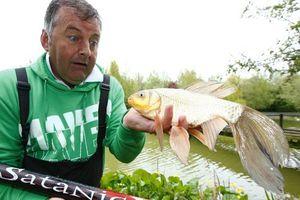 Γνωρίστε το ψάρι «Frankenfish»