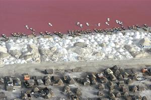 Ροζ λίμνη βαμμένη από βακτήρια