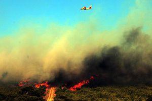 Πώς να αντιμετωπίσετε τις πυρκαγιές